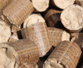 Présentés comme écologiques, les pellets s'imposent face au bois bûche